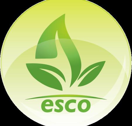 logo-ESCOBARCOIN